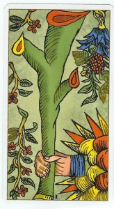 Ace of Wands_Marseille